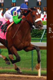 Greatness and Goodness: Barbaro